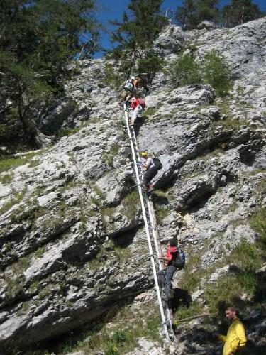 Foto: hofchri / Klettersteig Tour / Traunstein (1691 m) - Die Klettersteig-Quadrilogie / nochmal die Leiter in voller Länge / 20.02.2009 20:19:21