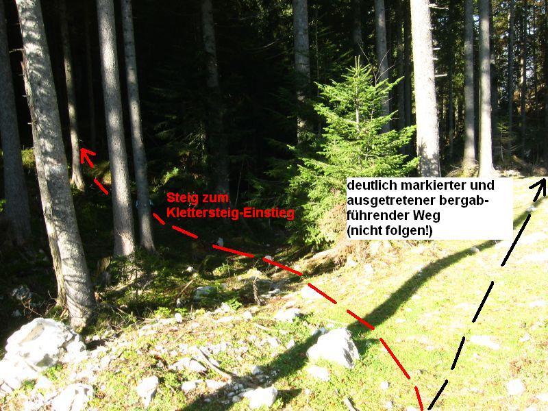 Foto: iron717 / Klettersteig Tour / Predigstuhl (1278 m) - Die Klettersteig-Trilogie / Abzweigung des Steiges der zum Einstieg in den