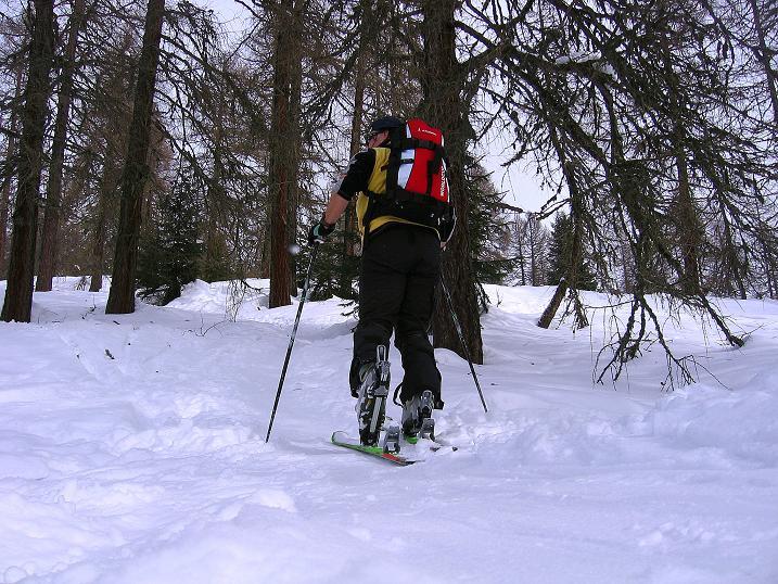 Foto: Andreas Koller / Ski Tour / Genusstour aufs Hochhorn (2623m) / Durch einen herrlichen Wald / 23.02.2009 00:28:08