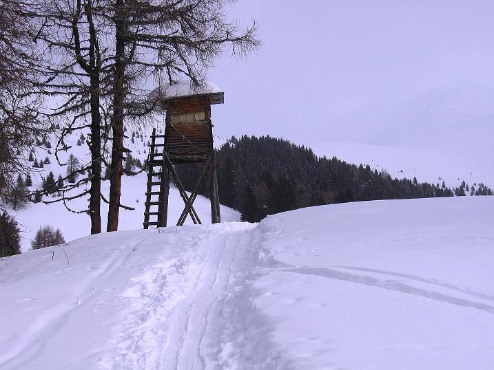 Foto: Andreas Koller / Ski Tour / Genusstour aufs Hochhorn (2623m) / 23.02.2009 00:27:46