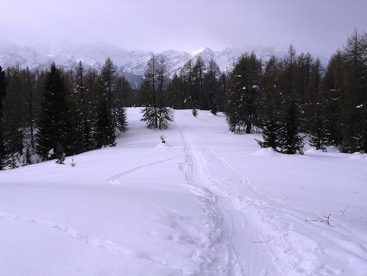 Foto: Andreas Koller / Ski Tour / Genusstour aufs Hochhorn (2623m) / 23.02.2009 00:27:39