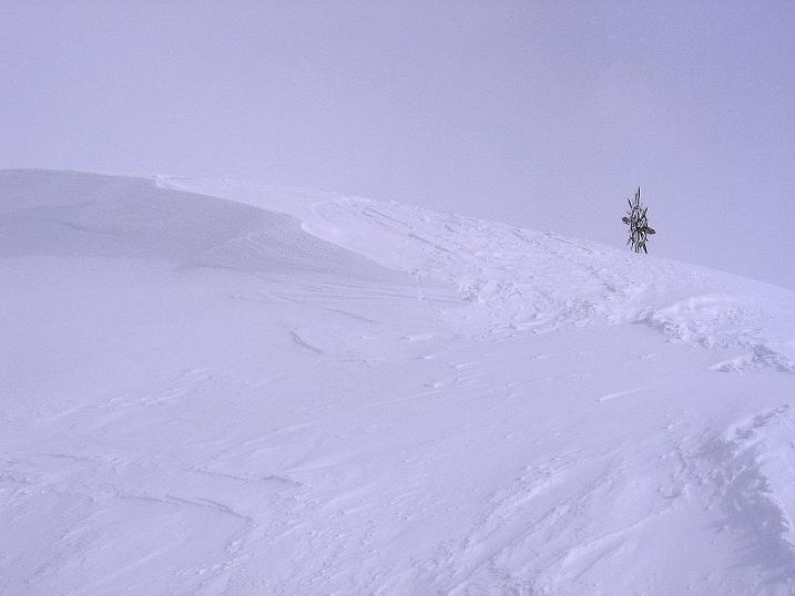 Foto: Andreas Koller / Ski Tour / Genusstour aufs Hochhorn (2623m) / Knapp unterhalb des Golfen / 23.02.2009 00:26:42