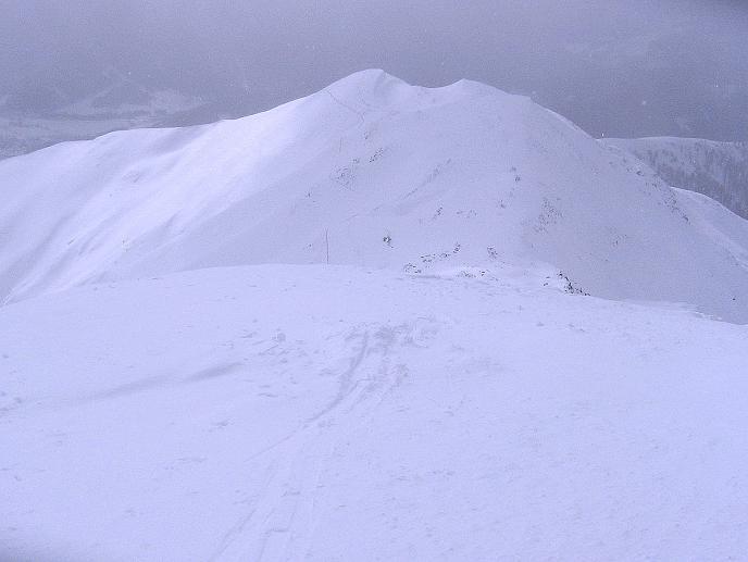 Foto: Andreas Koller / Ski Tour / Genusstour aufs Hochhorn (2623m) / Rückblick zum Golfen / 23.02.2009 00:24:43
