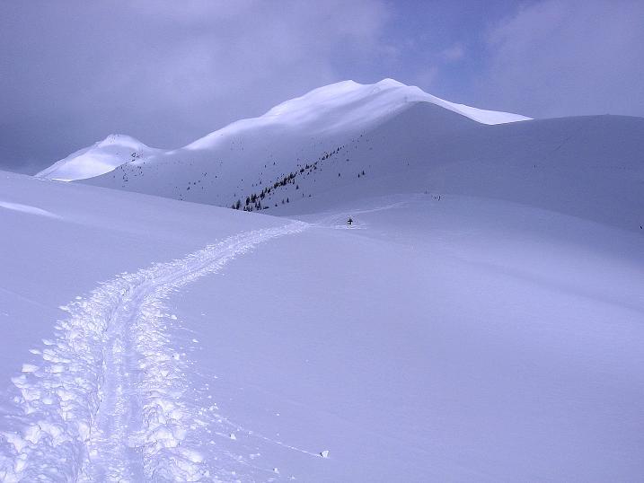 Foto: Andreas Koller / Ski Tour / Genusstour aufs Hochhorn (2623m) / Der Golfen / 23.02.2009 00:21:39