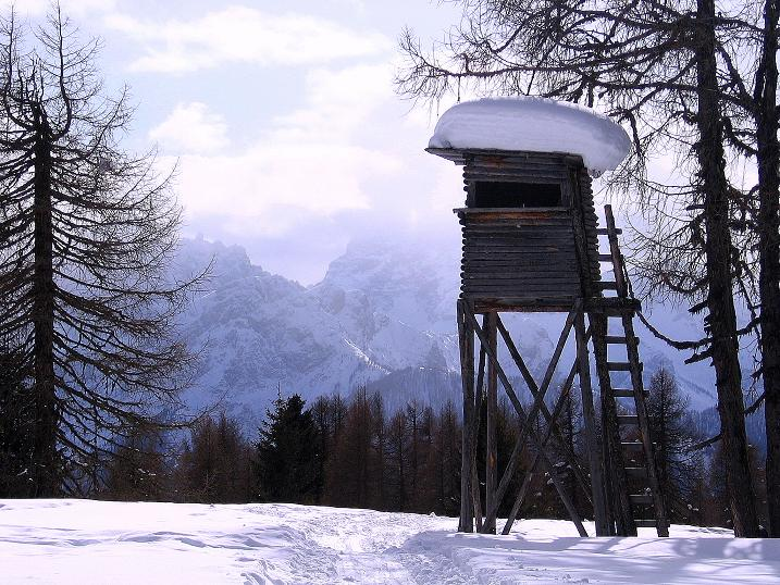 Foto: Andreas Koller / Ski Tour / Genusstour aufs Hochhorn (2623m) / 23.02.2009 00:19:47