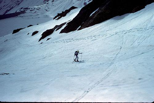 Foto: Sonja Hillerzeder / Ski Tour / Hasenöhrl 3257 m Über den Kuppelwieser Ferner / 26.03.2009 12:48:36
