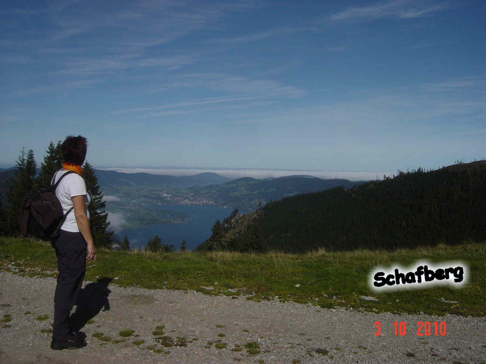 Foto: smirk / Wander Tour / Schafberg (1782 m) von Winkl / Blick vom Steinmaterl auf der Alm nach Mondsee / 09.11.2010 22:15:12