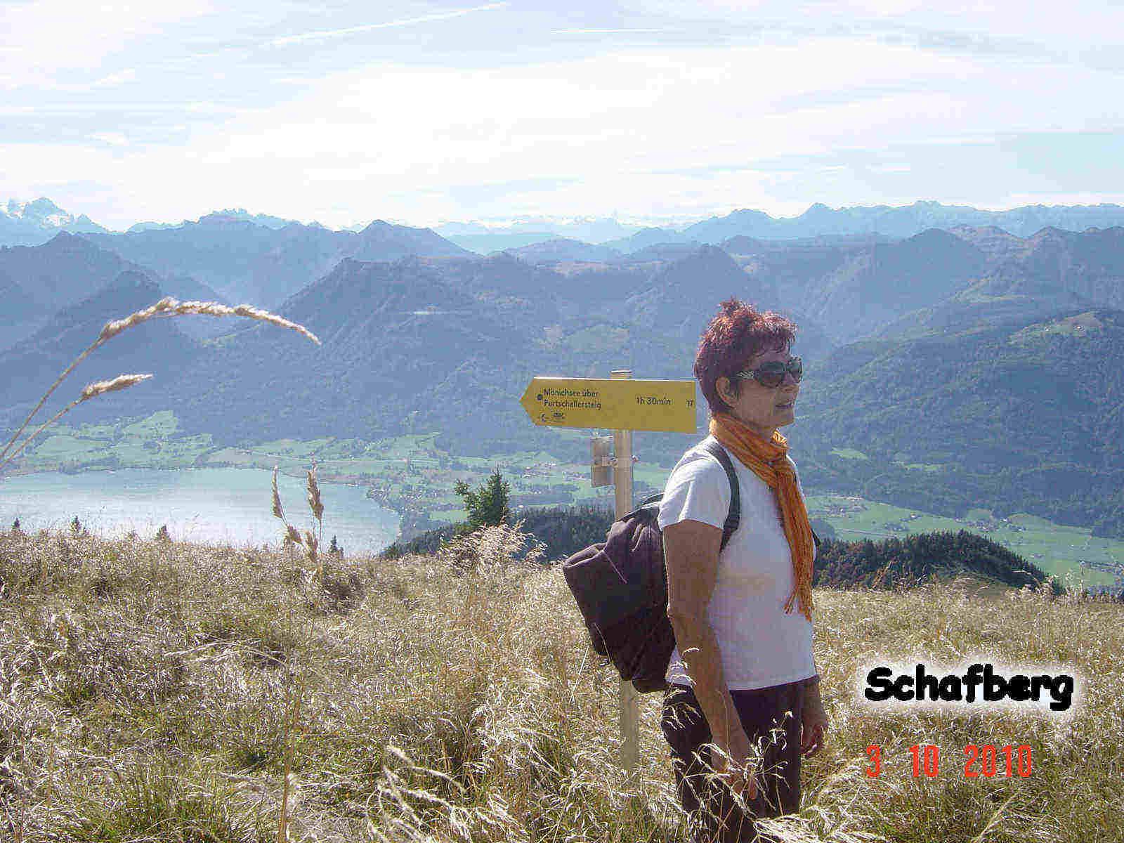 Foto: smirk / Wander Tour / Schafberg (1782 m) von Winkl / Kurz vorm Gipfelbahnhof - Blick übern Wolfgangsee / 09.11.2010 22:55:14