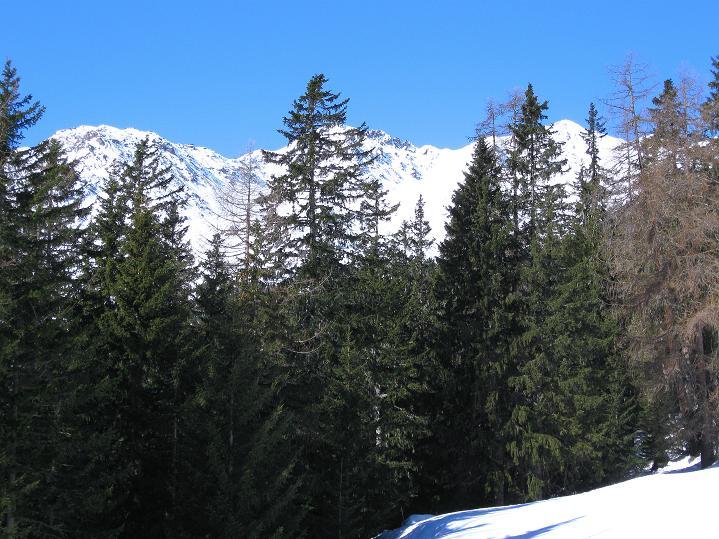 Foto: Andreas Koller / Ski Tour / Flimspitze (3113m) - Skidreitausender par excellence / 02.03.2009 19:39:17
