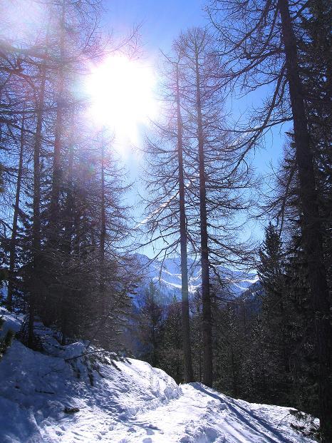 Foto: Andreas Koller / Ski Tour / Flimspitze (3113m) - Skidreitausender par excellence / 02.03.2009 19:39:06