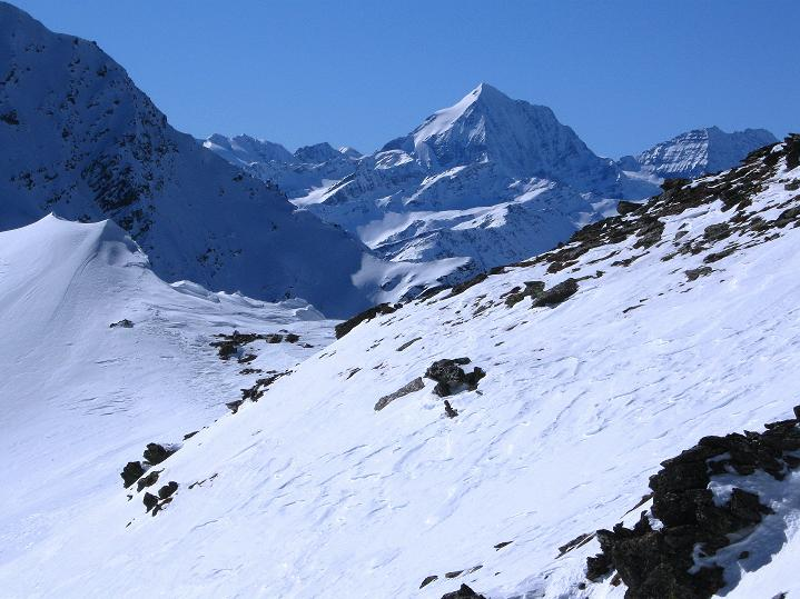 Foto: Andreas Koller / Ski Tour / Flimspitze (3113m) - Skidreitausender par excellence / Die Königspitze (3859 m) schaut über den Grat  / 02.03.2009 19:31:54
