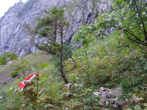 Foto: hofchri / Klettersteig Tour / Äußerer Schönbühel (1785 m) über