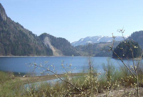 Foto: hofchri / Wander Tour / Schwarzensee-Umrundung (716 m) / 07.03.2009 12:10:56