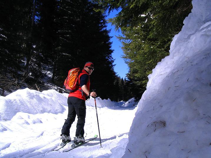 Foto: Andreas Koller / Skitour / Über den Geiger auf den Kilnprein (2408m) / Schöner Waldanstieg / 11.03.2009 21:12:35