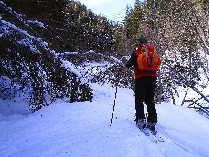 Foto: Andreas Koller / Skitour / Über den Geiger auf den Kilnprein (2408m) / 11.03.2009 21:12:01
