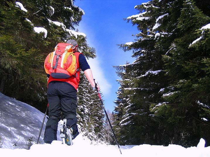 Foto: Andreas Koller / Skitour / Über den Geiger auf den Kilnprein (2408m) / 11.03.2009 21:11:22