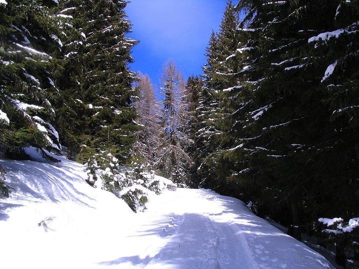 Foto: Andreas Koller / Skitour / Über den Geiger auf den Kilnprein (2408m) / 11.03.2009 21:11:06