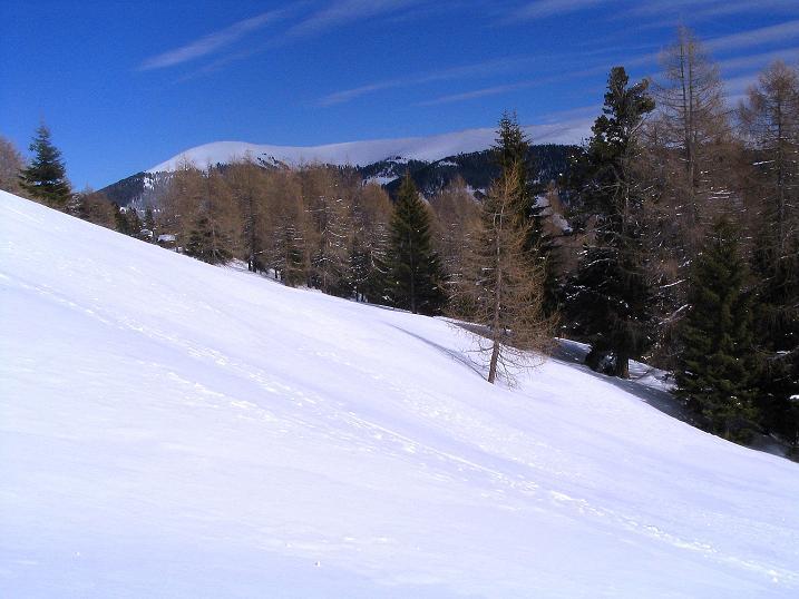 Foto: Andreas Koller / Skitour / Über den Geiger auf den Kilnprein (2408m) / Kurz vor der Rosatinalpe / 11.03.2009 21:10:56