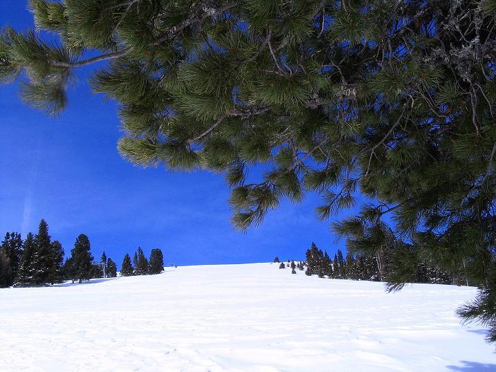 Foto: Andreas Koller / Skitour / Über den Geiger auf den Kilnprein (2408m) / 11.03.2009 21:09:44