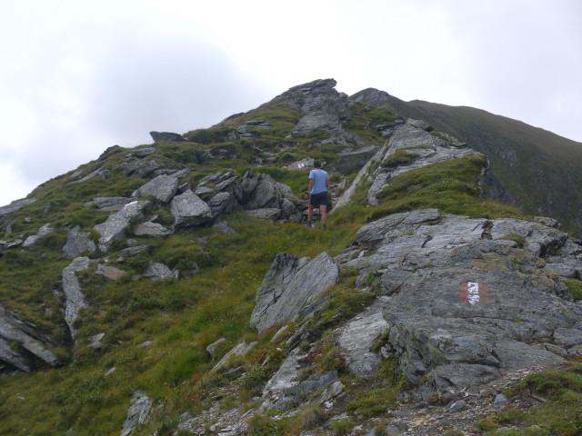 Foto: Wolfgang Lauschensky / Wander Tour / Auf das Große Gurpitscheck von Tweng aus / ab der Scharte südwärts / 26.08.2012 00:00:36