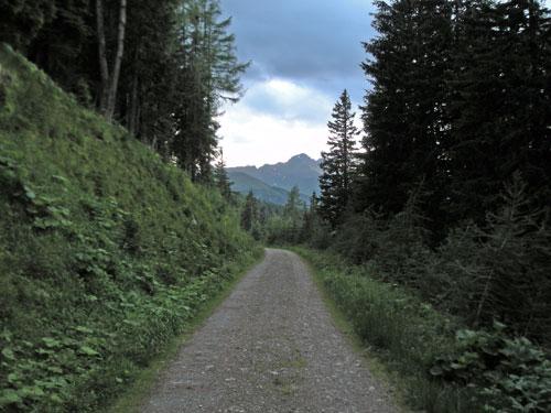 Foto: Samson / Wander Tour / Vom Katschberg auf das Kareck / Blick auf das Kareck / 06.07.2009 09:37:08