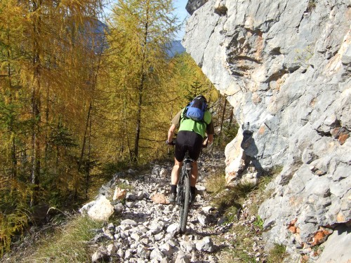 Foto: hofchri / Mountainbike Tour / Rund um das Lattengebirge über Moosenalm (1424 m) / 1A-Plus-Trail / 13.03.2009 19:19:21
