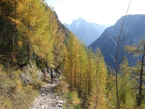 Foto: hofchri / Mountainbike Tour / Rund um das Lattengebirge über Moosenalm (1424 m) / 13.03.2009 19:19:41