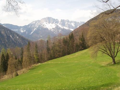 Foto: hofchri / Mountainbike Tour / Roßfeldstraße (1543 m) von Hallein / bei der Abfahrt nach Scheffau / 13.03.2009 19:31:37
