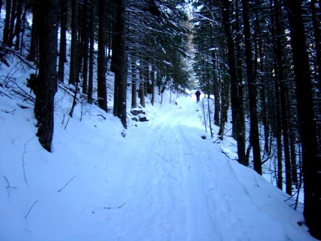Foto: Manfred Karl / Ski Tour / Watzmann Gugl, 1801 m / Der Aufstieg erfolgt teilweise entlang des Sommerweges / 15.03.2009 06:55:41