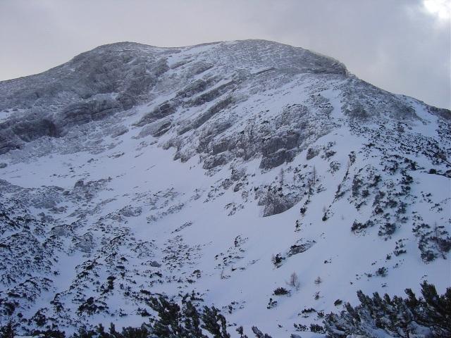 Foto: Manfred Karl / Ski Tour / Watzmann Gugl, 1801 m / Blick zum weiteren Aufstieg auf das Watzmann Hocheck / 15.03.2009 06:52:13