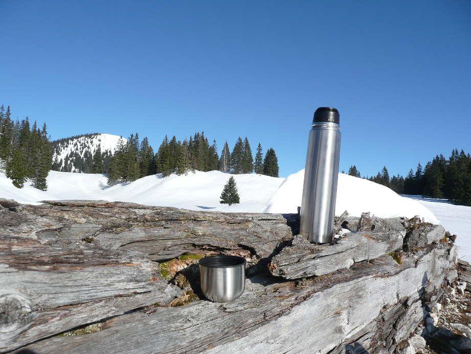 Foto: Sturmi / Schneeschuh Tour / Mayrwipfel (1736m) / Raststation verfallene Mayralm mit Blick auf Mayrwipfel / 16.03.2009 08:48:34
