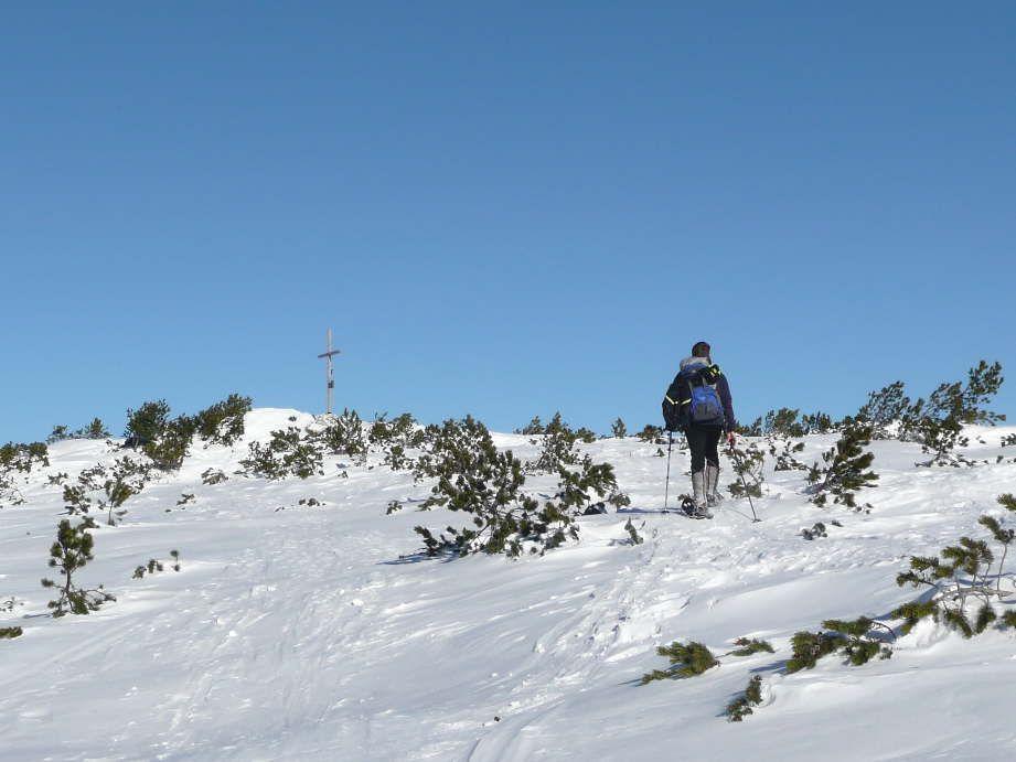 Foto: Sturmi / Schneeschuh Tour / Mayrwipfel (1736m) / Die letzten Meter / 16.03.2009 08:48:39