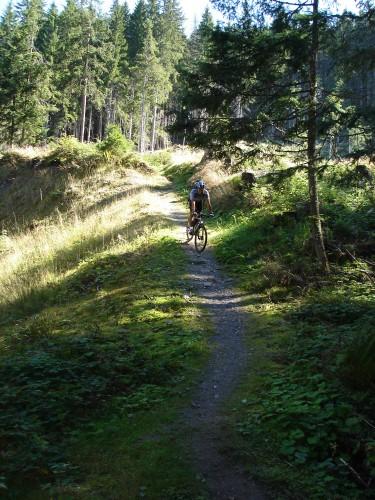 Foto: hofchri / Mountainbike Tour / Hochgründeck (1827 m) von St. Johann / traumhafter Singeltrail / 19.03.2009 21:56:10