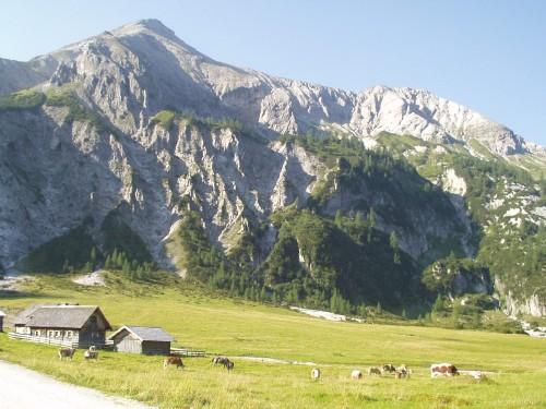 Foto: hofchri / Mountainbike Tour / Giglachseen (1986 m) über Ursprungalm / vor der Urspungalm (1604 m) / 02.04.2009 20:49:11