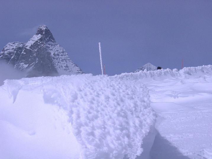 Foto: Andreas Koller / Schneeschuh Tour / Panorama-Schneeschuhtour auf die Gobba di Rollin (3899 m) / 15.04.2009 23:49:08