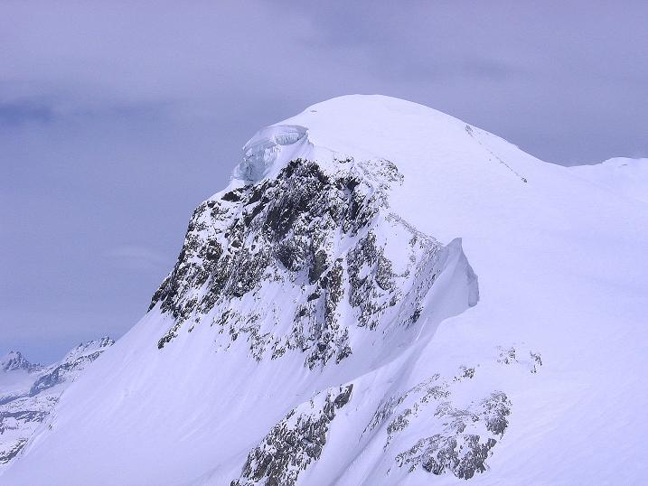 Foto: Andreas Koller / Schneeschuh Tour / Panorama-Schneeschuhtour auf die Gobba di Rollin (3899 m) / Breithorn (4164 m) / 15.04.2009 23:48:45
