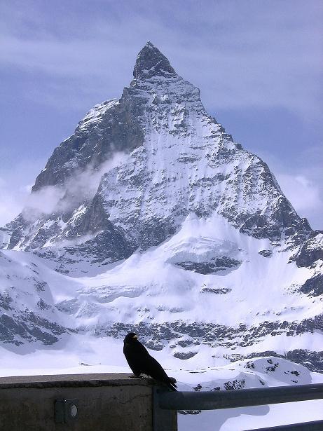 Foto: Andreas Koller / Schneeschuh Tour / Panorama-Schneeschuhtour auf die Gobba di Rollin (3899 m) / 15.04.2009 23:45:32