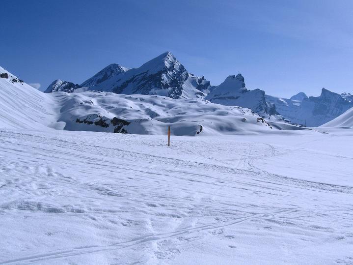 Foto: Andreas Koller / Ski Tour / Hoch über dem Gemmipass aufs Steghorn (3146m) / 16.04.2009 03:01:56