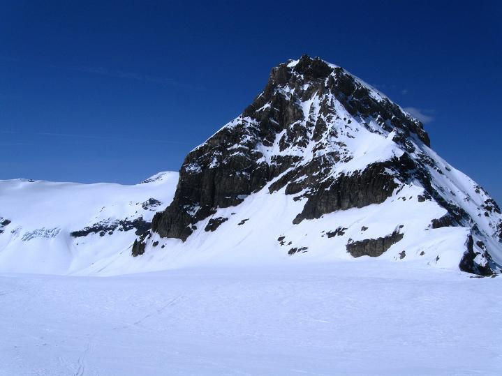 Foto: Andreas Koller / Ski Tour / Hoch über dem Gemmipass aufs Steghorn (3146m) / 16.04.2009 02:55:55