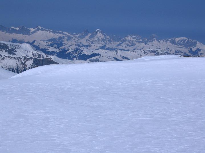 Foto: Andreas Koller / Ski Tour / Hoch über dem Gemmipass aufs Steghorn (3146m) / Vom Steghorngletscher reicht der Blick in die Berner Voralpen / 16.04.2009 02:55:48