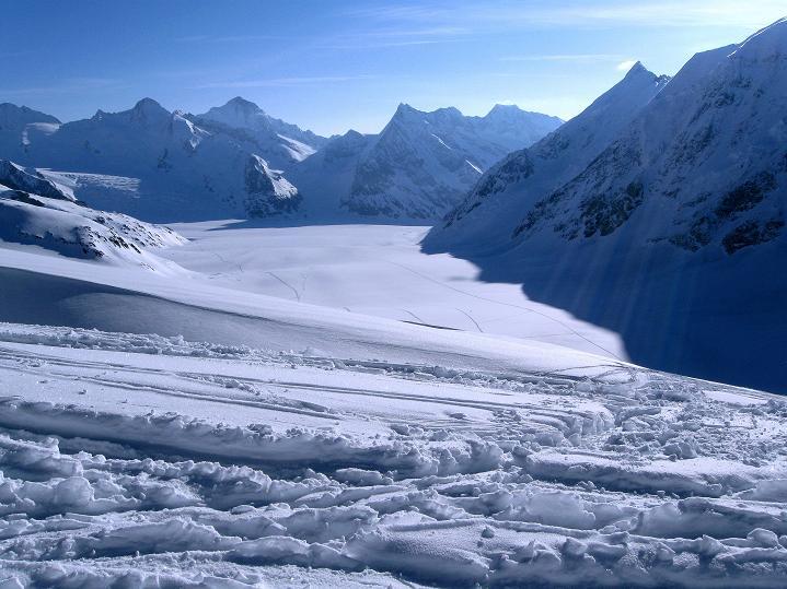 Foto: Andreas Koller / Ski Tour / Berner Alpen Durchquerung 2: Äbeni Flue (3962m) / Konkordiaplatz mit Finsteraarhorn (4273 m) / 17.04.2009 23:01:50