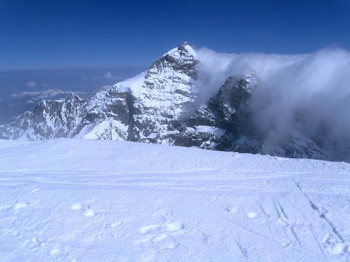 Foto: Andreas Koller / Ski Tour / Berner Alpen Durchquerung 2: Äbeni Flue (3962m) / Die Jungfrau (4158 m) / 17.04.2009 22:58:09