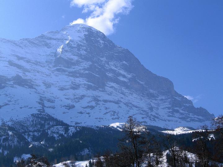 Foto: Andreas Koller / Ski Tour / Berner Alpen Durchquerung 1: Louwihorn (3777m) / Der Eiger (3980 m) über Grindelwald / 16.04.2009 23:05:56