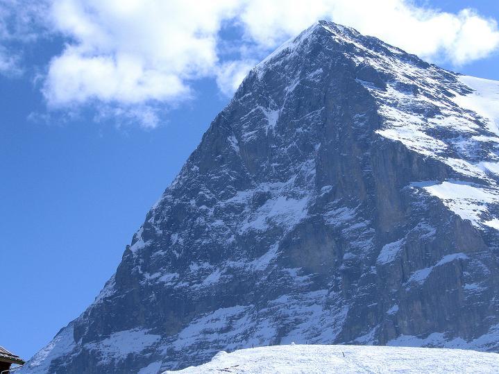 Foto: Andreas Koller / Ski Tour / Berner Alpen Durchquerung 1: Louwihorn (3777m) / Die berühmteste Nordwand der Alpen: Eiger (3980 m) / 16.04.2009 23:03:58