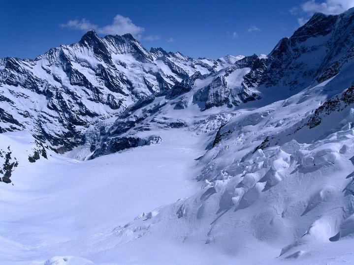 Foto: Andreas Koller / Ski Tour / Berner Alpen Durchquerung 1: Louwihorn (3777m) / 16.04.2009 23:01:47