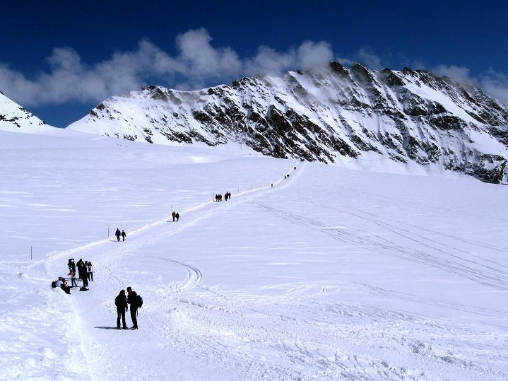 Foto: Andreas Koller / Ski Tour / Berner Alpen Durchquerung 1: Louwihorn (3777m) / 16.04.2009 22:59:54