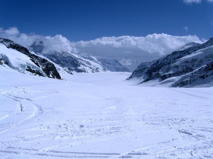 Foto: Andreas Koller / Ski Tour / Berner Alpen Durchquerung 1: Louwihorn (3777m) / Aletschgletscher / 16.04.2009 22:58:46