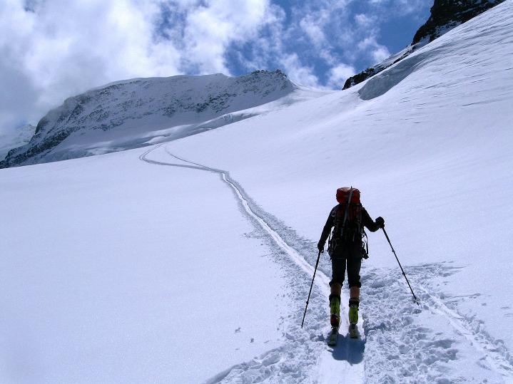 Foto: Andreas Koller / Ski Tour / Berner Alpen Durchquerung 1: Louwihorn (3777m) / Aufstieg über den Jungfraufirn aufs Louwihorn / 16.04.2009 22:58:14
