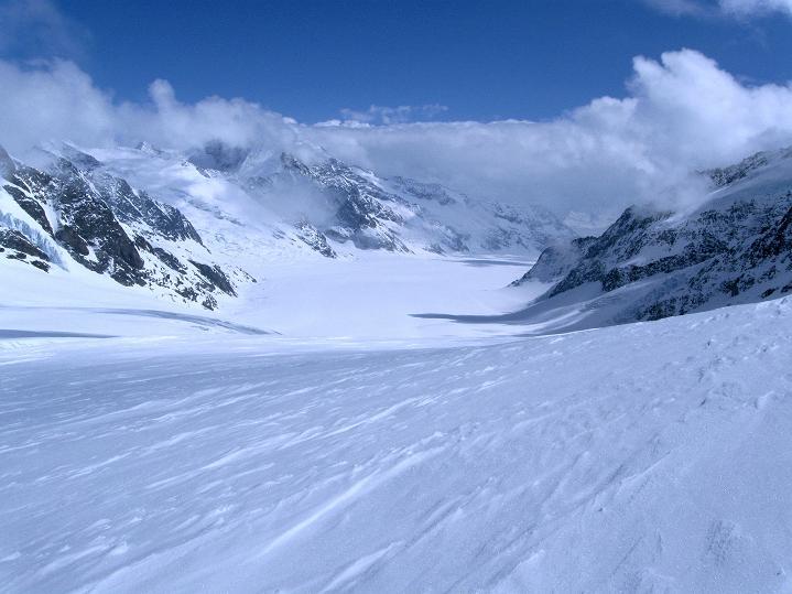 Foto: Andreas Koller / Ski Tour / Berner Alpen Durchquerung 1: Louwihorn (3777m) / Blick auf den Großen Aletschgletscher und den Konkordiaplatz / 16.04.2009 22:57:43