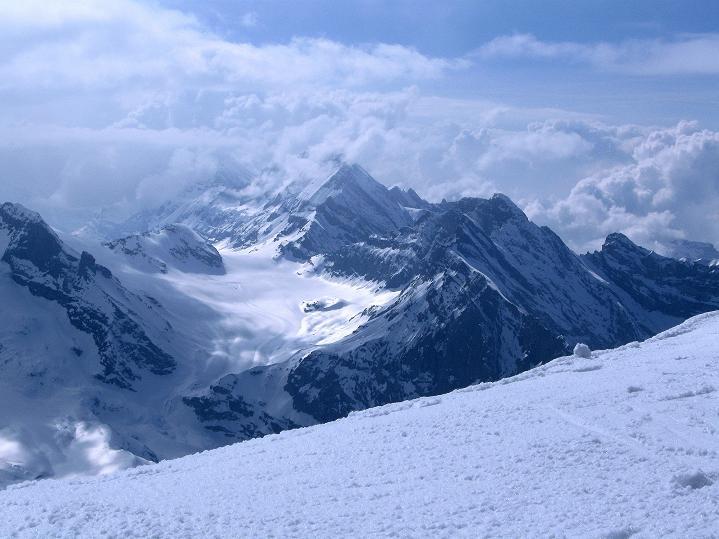 Foto: Andreas Koller / Ski Tour / Berner Alpen Durchquerung 1: Louwihorn (3777m) / Blick auf den Kanderfirn und fie Blümlisalpgruppe (3664 m) / 16.04.2009 22:48:48